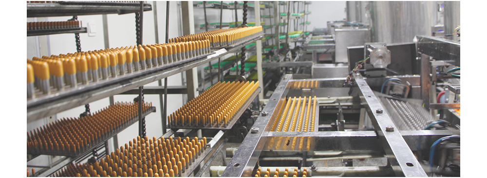 capsule production line